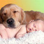 dog_baby_200
